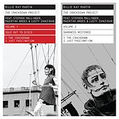 The Crackdown Project, Vol. 1 & 2 (Sold Out to Disco / Darkness Restored) (Remastered) by Billie Ray Martin