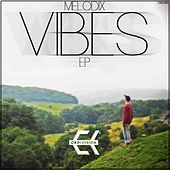 Vibes EP de Various Artists