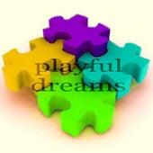 Playful Dreams (Deeper Hot House Music) de Paduraru