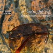 Un Bano Del Sol De Ibiza 2009 by Various Artists
