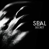 Secret de Seal