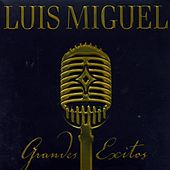 Grandes Exitos - 2 CD-worldwide by Luis Miguel