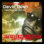 Reckless Party Goer (Let's Have Fun) [feat. Nick Rio] by David Rush