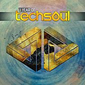 1 Year Of Techsoul von Various Artists