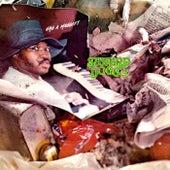 Gag a Maggott (Remastered) de Swamp Dogg