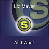 All I Want by Liz Meyer