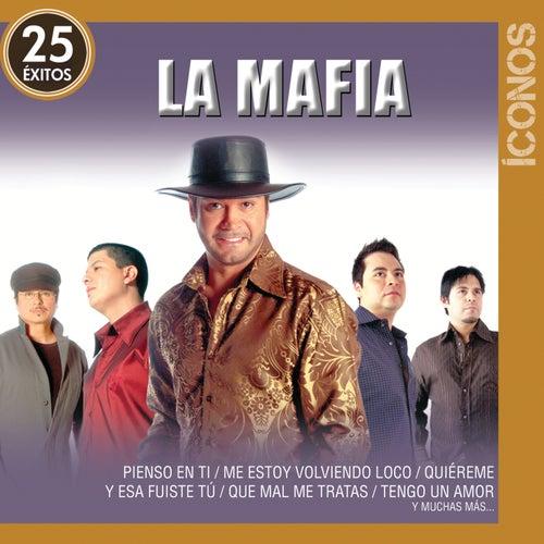 Íconos 25 Éxitos by La Mafia
