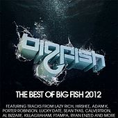 Best of Big Fish 2012 von Various Artists