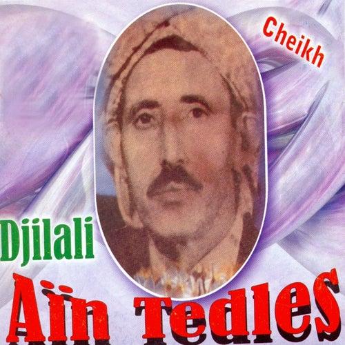 cheikh djilali ain tedles