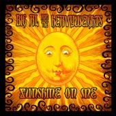 Sunshine On Me by Big Al & The Heavyweights