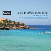 Un Bano Del Sol De Ibiza 2008 by Various Artists