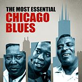 The Most Essential Chicago Blues by Various Artists