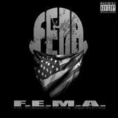 F.E.M.a. de South Side Connect Gang