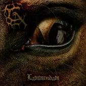 Lammendam by Carach Angren