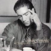 Me Estoy Enamorando de Alejandro Fernández