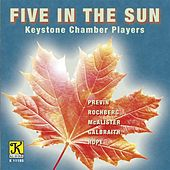 Five in the Sun by Various Artists