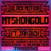 Mtshongolo by Black Motion