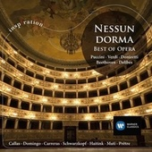 Nessun Dorma (Spanish Version) de Various Artists