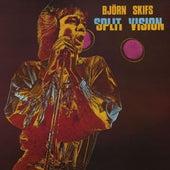 Split Vision by Björn Skifs