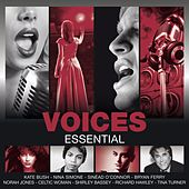Essential: Voices de Various Artists