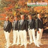 Livets ljusa sida de Lasse Stefanz