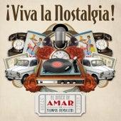 ¡Viva la Nostalgia!-El Disco de Amar en Tiempos Revueltos de Various Artists