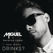 How Many Drinks? von Miguel