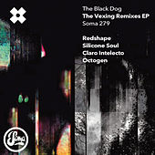 The Vexing Remixes von The Black Dog