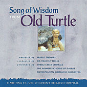 Song of Wisdom from Old Turtle by Various Artists