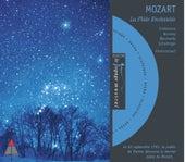 Mozart : La Flûte enchantée [Extraits] de Nikolaus Harnoncourt