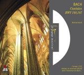 Bach, JS : Cantates Sacrées BWV Nos 140 & 147 von Nikolaus Harnoncourt