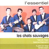 Essentiel 2 by Les Chats Sauvages