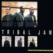 Demarre Le Show by Tribal Jam