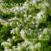 Sounds for the Soul 14: Shakuhachi and Stream by Sounds for the Soul