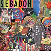 Smash Your Head On The Punk Rock von Sebadoh