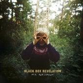 My Perception de Blackbox Revelation