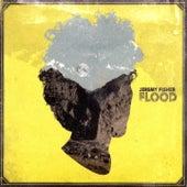 Flood by Jeremy Fisher
