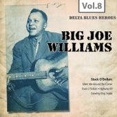 Delta Blues Heroes, Vol. 8 de Big Joe Williams