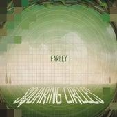 Squaring Circles by Farley