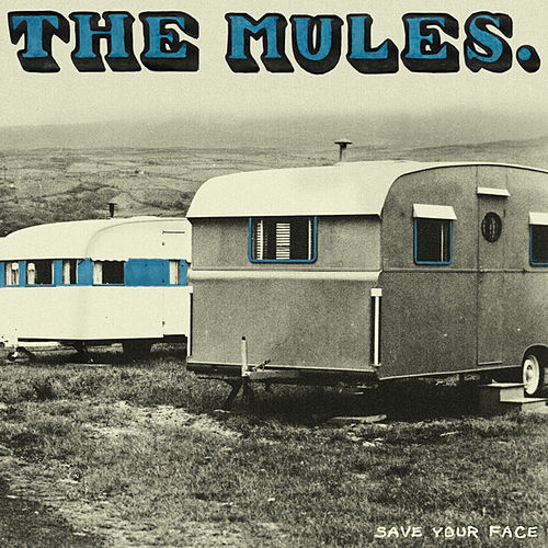 Save Your Face by The Mules