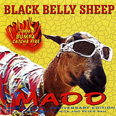 Black Belly Sheep by Various Artists