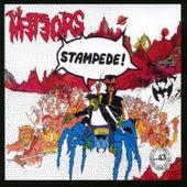 Stampede! by The Meteors