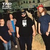 8-Way Santa von Tad