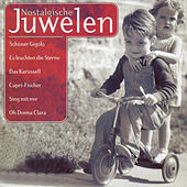 Nostalgische Juwelen de Various Artists