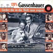 120% Gassenhauer von Various Artists
