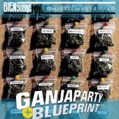 Ganja Party Blueprint de Various Artists