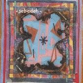 Bubble & Scrape von Sebadoh