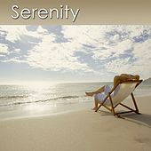 Serenity (Meditation Music With the Gentle Sounds of the Ocean) by Dr. Harry Henshaw