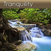 Tranquility (Meditation Music With a Stream) by Dr. Harry Henshaw