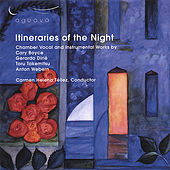 Itinernaries of the Night by Various Artists